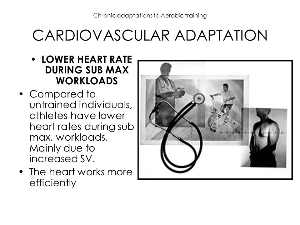 Chronic adaptations to Aerobic training CARDIOVASCULAR ADAPTATION