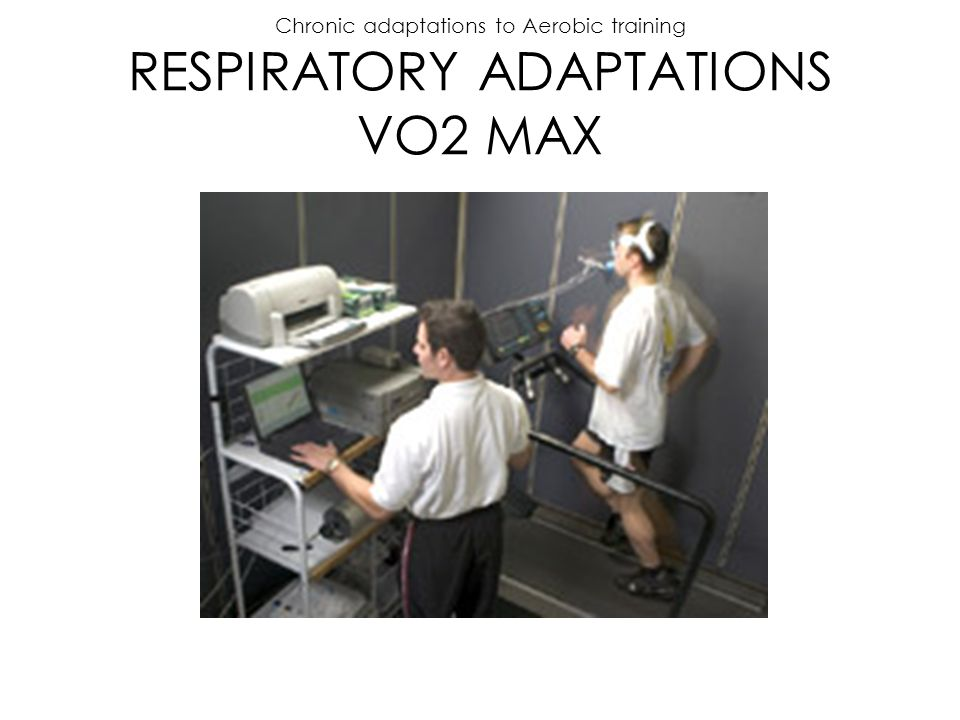 Chronic adaptations to Aerobic training RESPIRATORY ADAPTATIONS VO2 MAX
