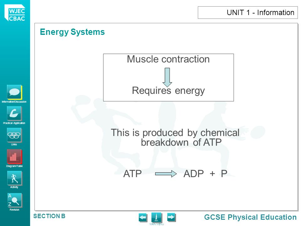 This is produced by chemical breakdown of ATP