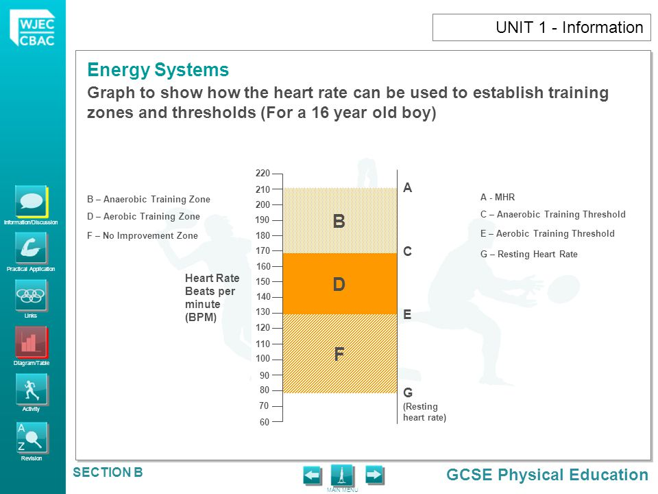 UNIT 1 - Information Graph to show how the heart rate can be used to establish training zones and thresholds (For a 16 year old boy)