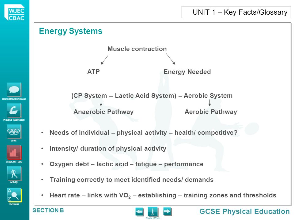UNIT 1 – Key Facts/Glossary