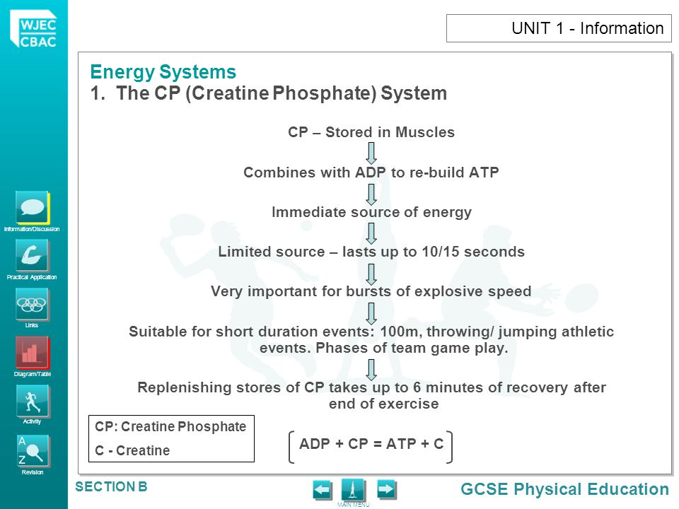 The CP (Creatine Phosphate) System