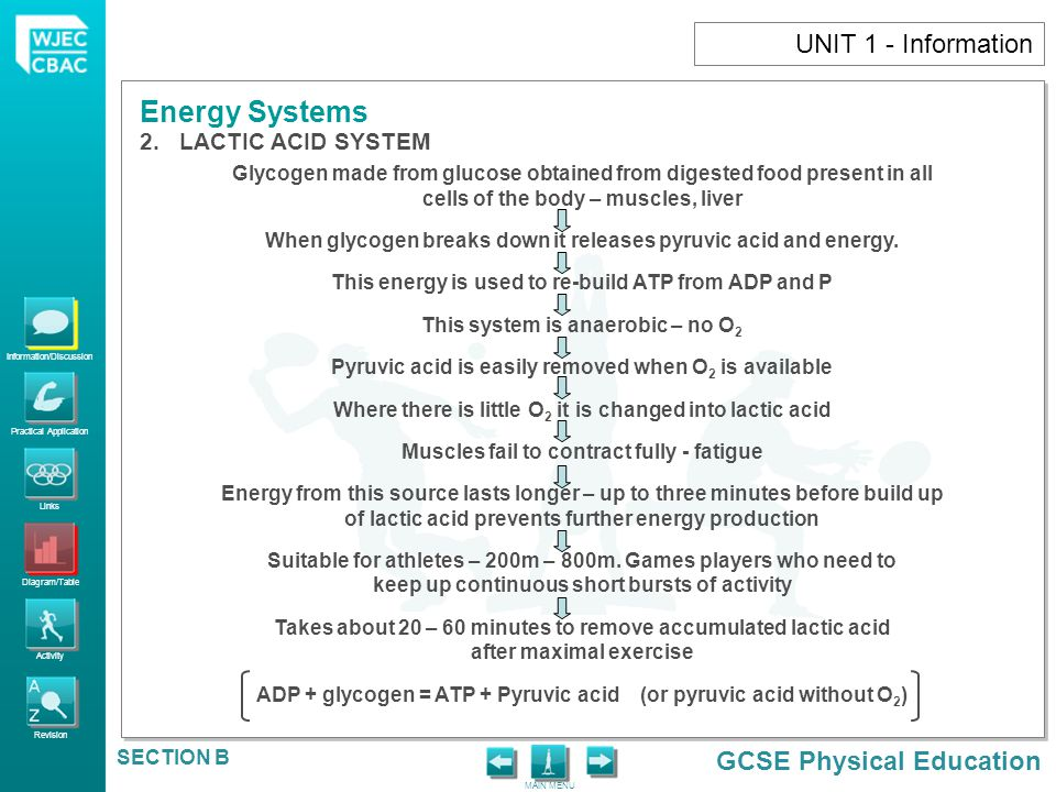 UNIT 1 - Information LACTIC ACID SYSTEM
