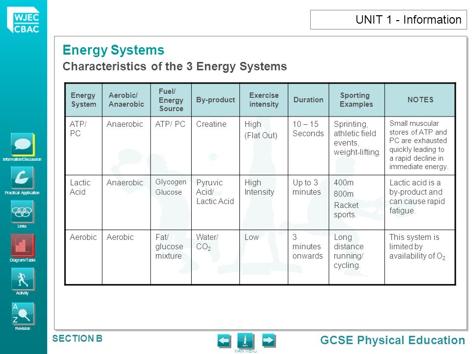 Characteristics of the 3 Energy Systems