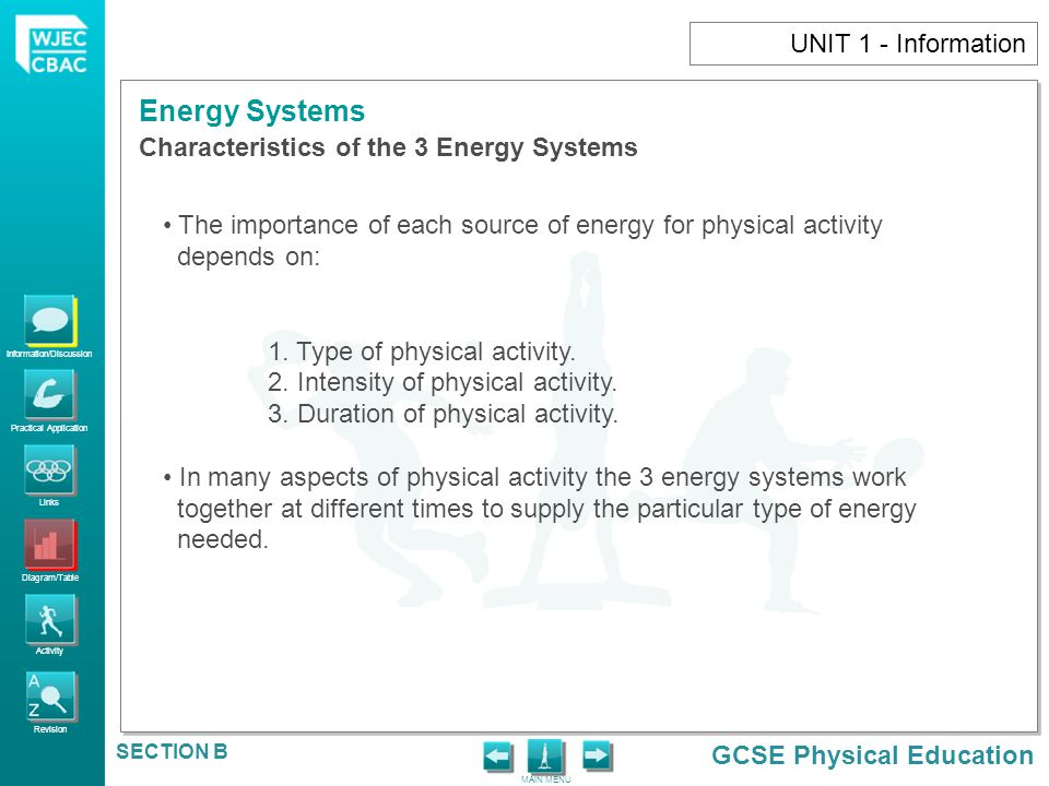 UNIT 1 - Information Characteristics of the 3 Energy Systems. The importance of each source of energy for physical activity.