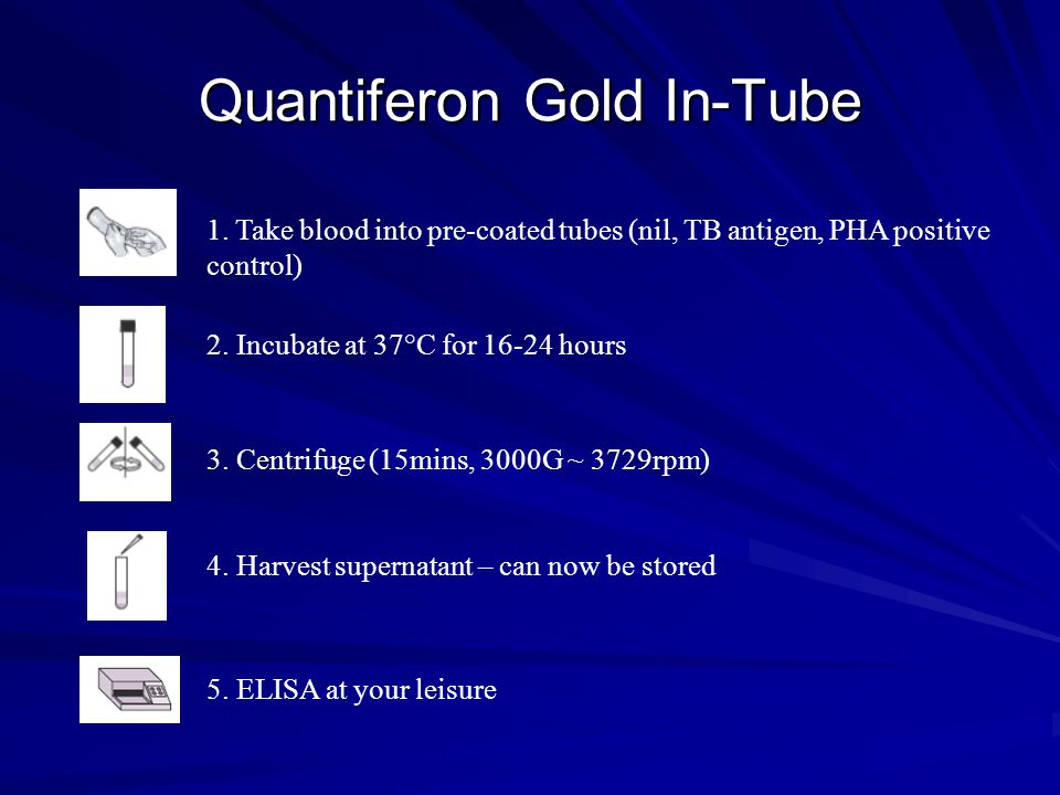Quantiferon Gold In-Tube