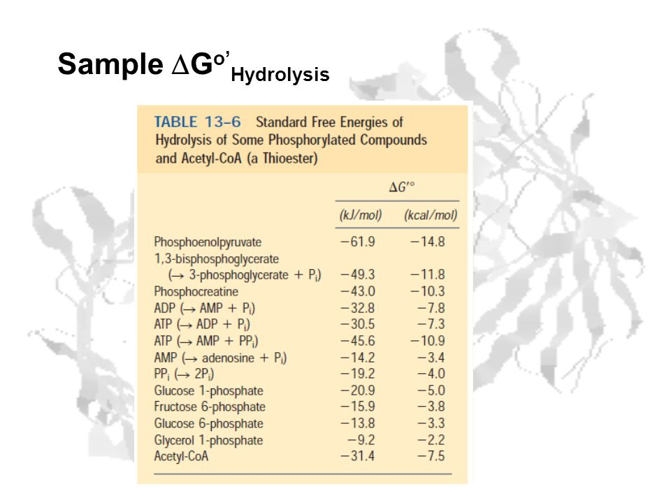 Sample DGo'Hydrolysis