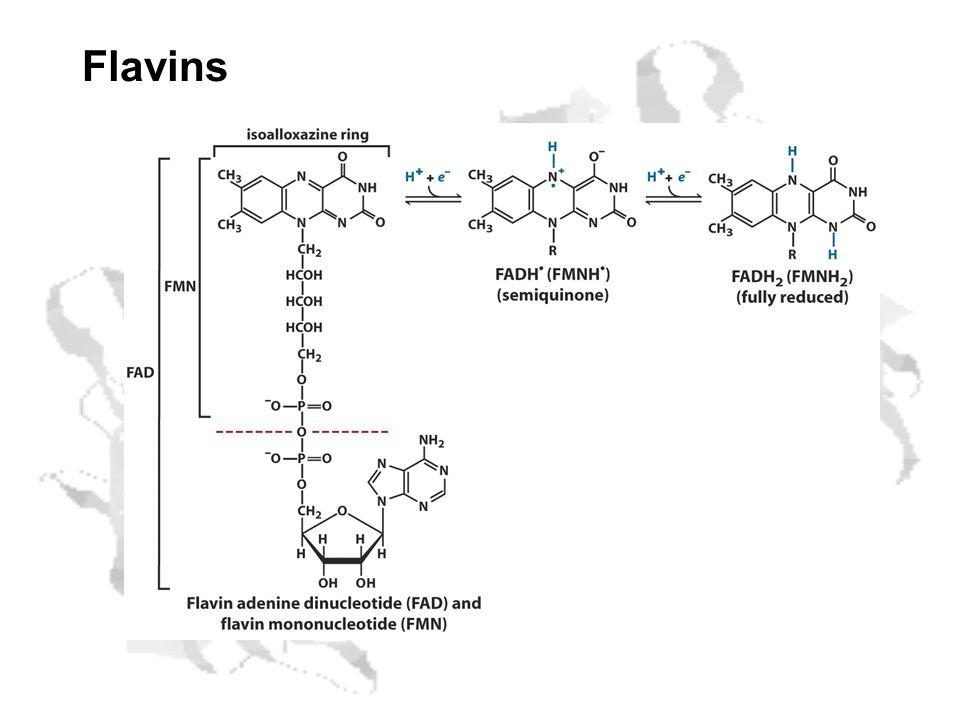 Flavins