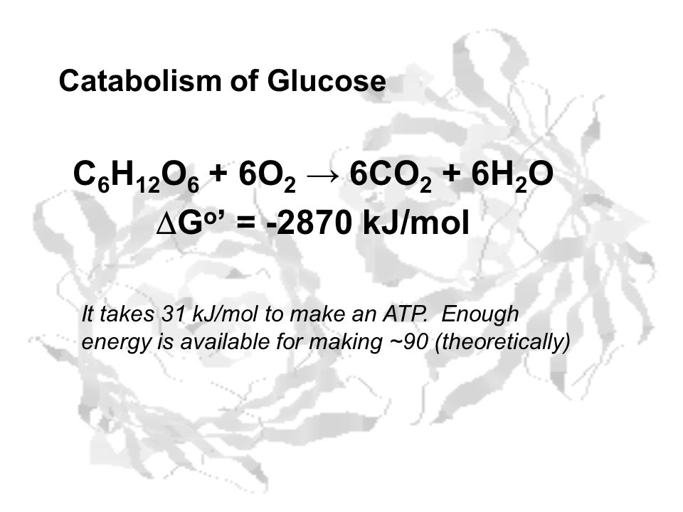 C6H12O6 + 6O2 → 6CO2 + 6H2O DGo' = -2870 kJ/mol Catabolism of Glucose