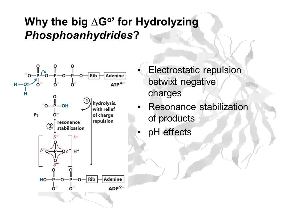 Why the big DGo' for Hydrolyzing Phosphoanhydrides