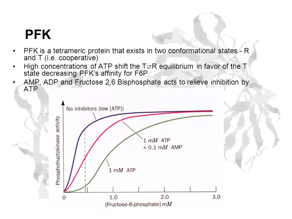 PFK PFK is a tetrameric protein that exists in two conformational states - R and T (i.e. cooperative)