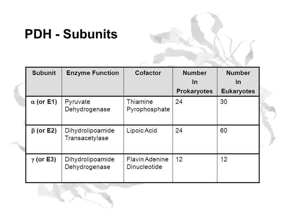 PDH - Subunits Subunit Enzyme Function Cofactor Number In Prokaryotes