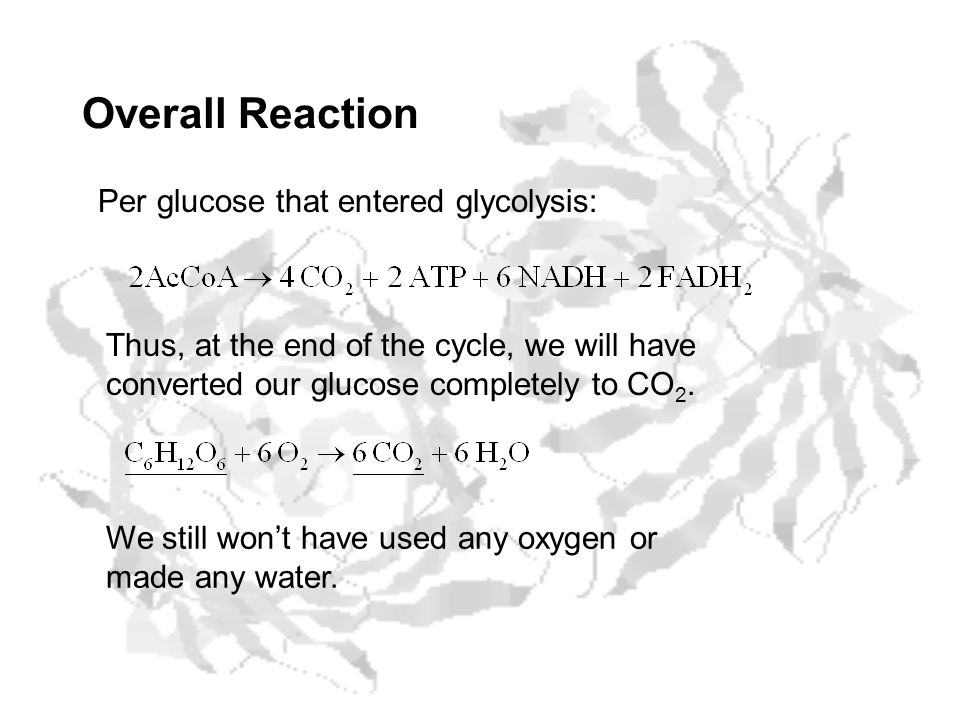Overall Reaction Per glucose that entered glycolysis:
