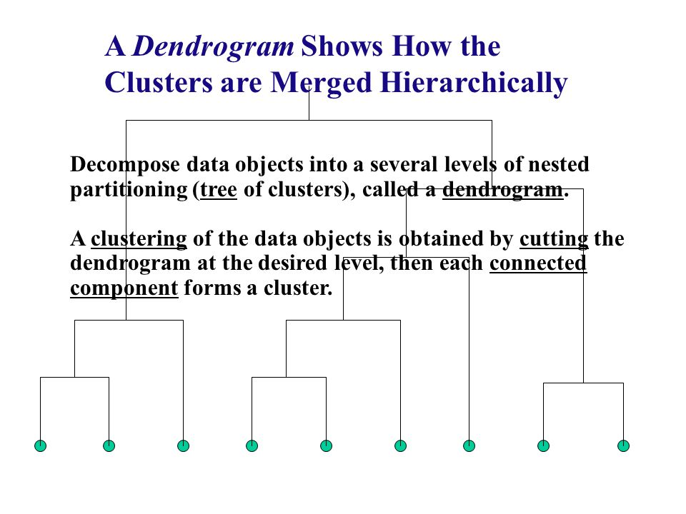 A Dendrogram Shows How the Clusters are Merged Hierarchically
