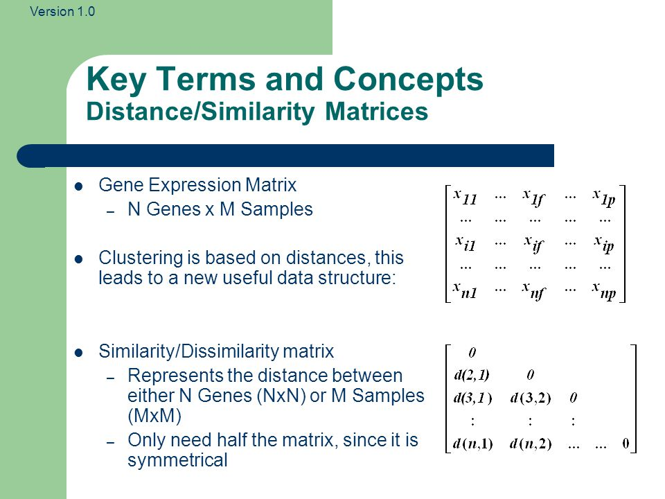 Key Terms and Concepts Distance/Similarity Matrices