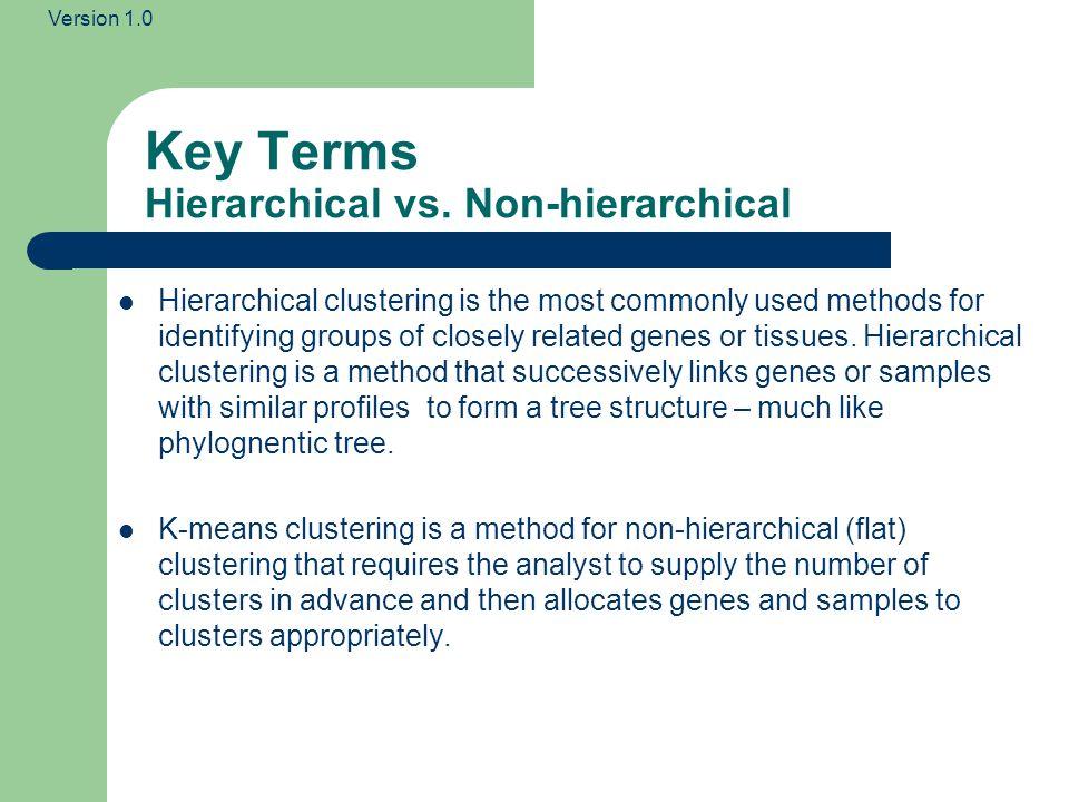 Key Terms Hierarchical vs. Non-hierarchical