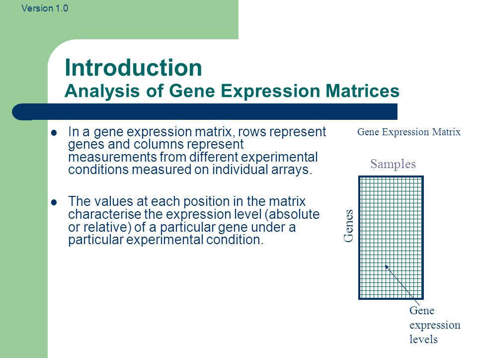 Introduction Analysis of Gene Expression Matrices