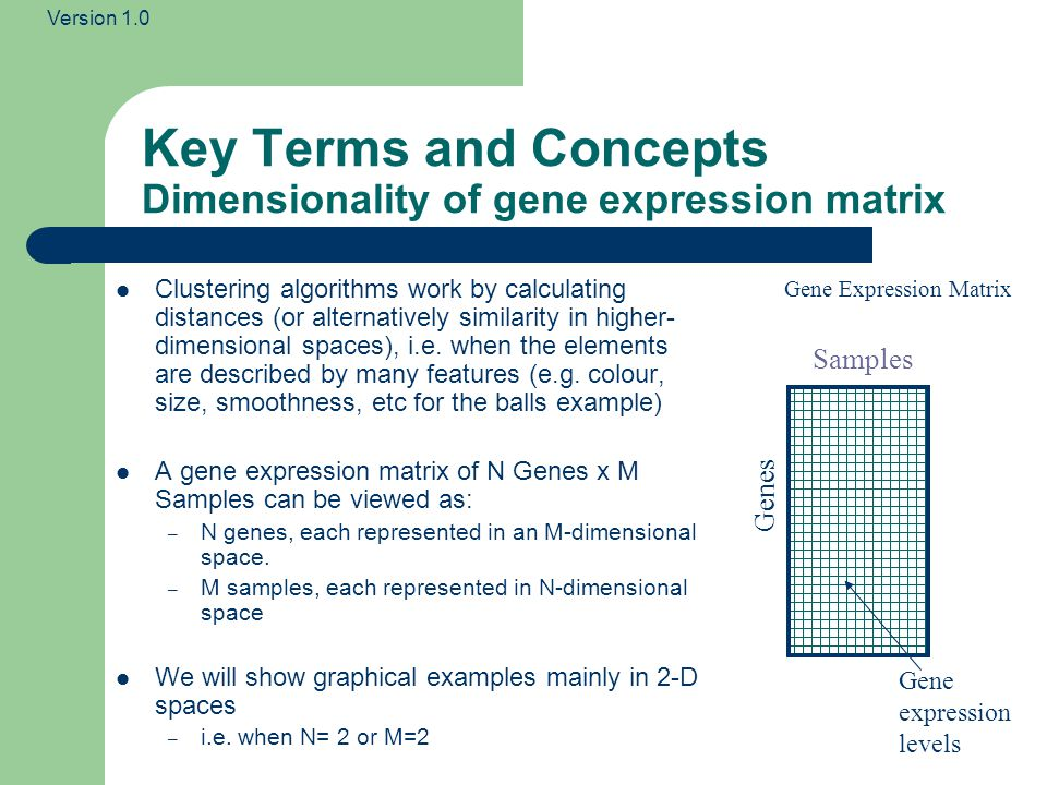 Key Terms and Concepts Dimensionality of gene expression matrix