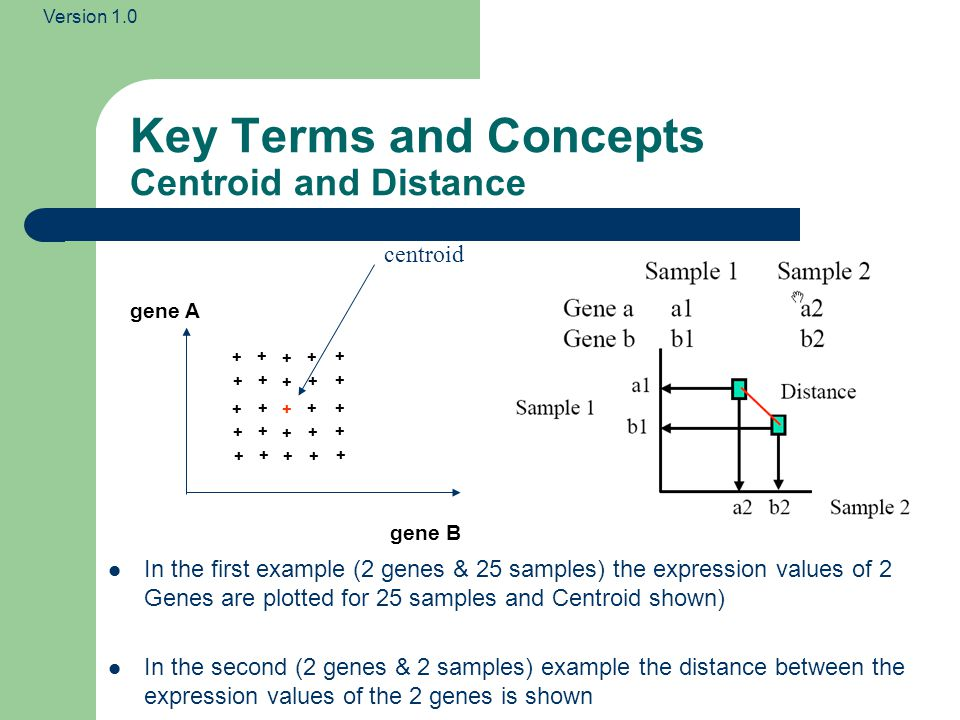 Key Terms and Concepts Centroid and Distance
