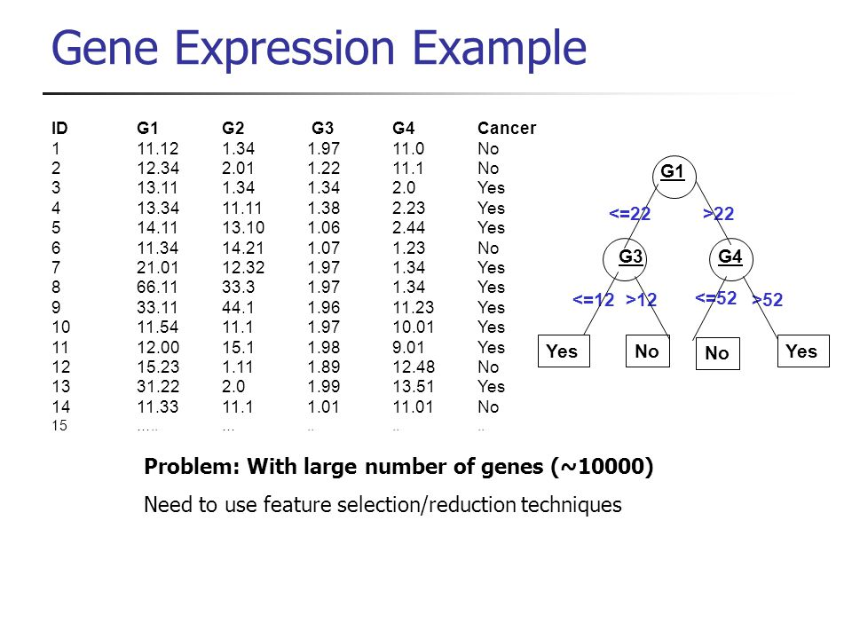Gene Expression Example