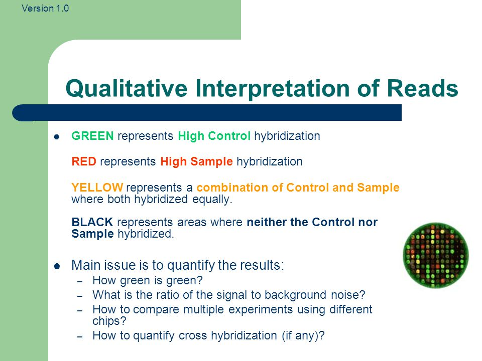 Qualitative Interpretation of Reads