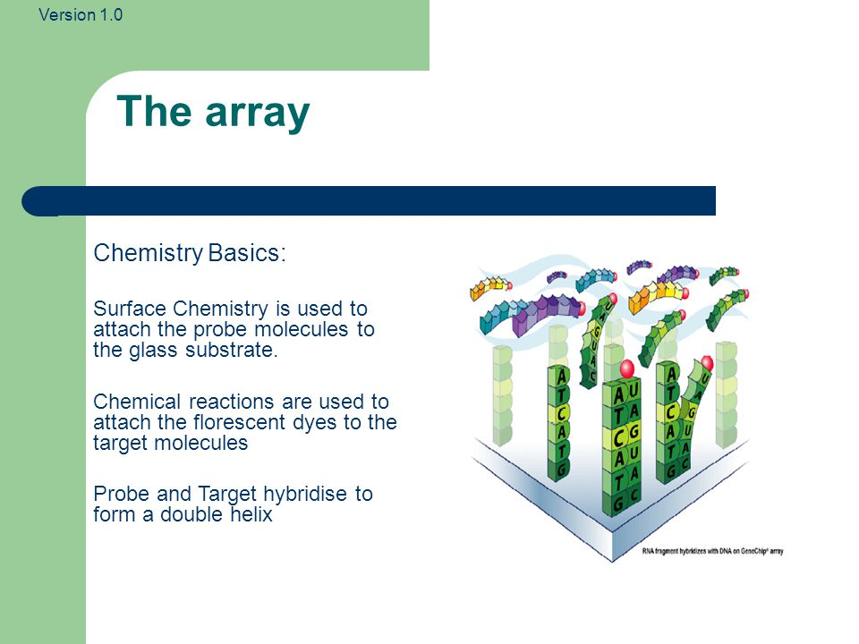 The array Chemistry Basics: