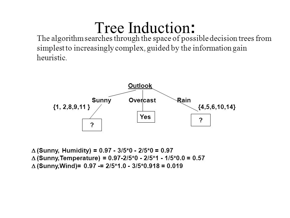 Tree Induction: