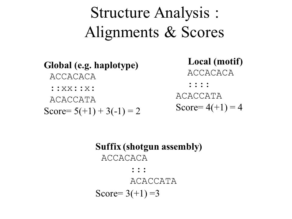 Structure Analysis : Alignments & Scores