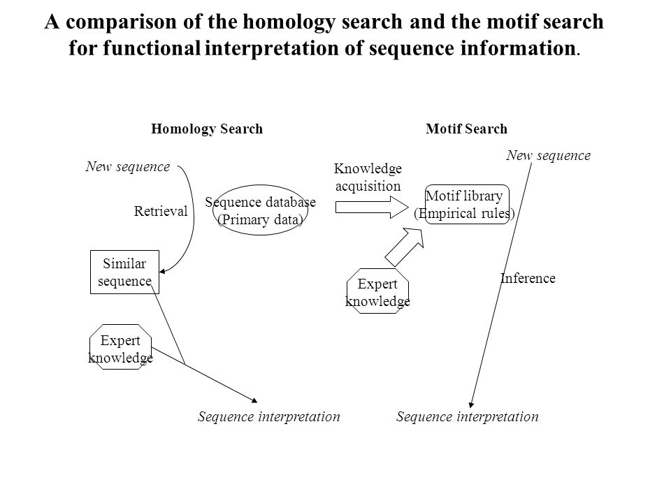 A comparison of the homology search and the motif search for functional interpretation of sequence information.