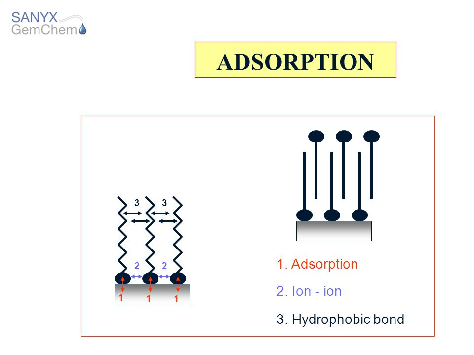 ADSORPTION 1. Adsorption 2. Ion - ion 3. Hydrophobic bond 3 3 2 2 1 1