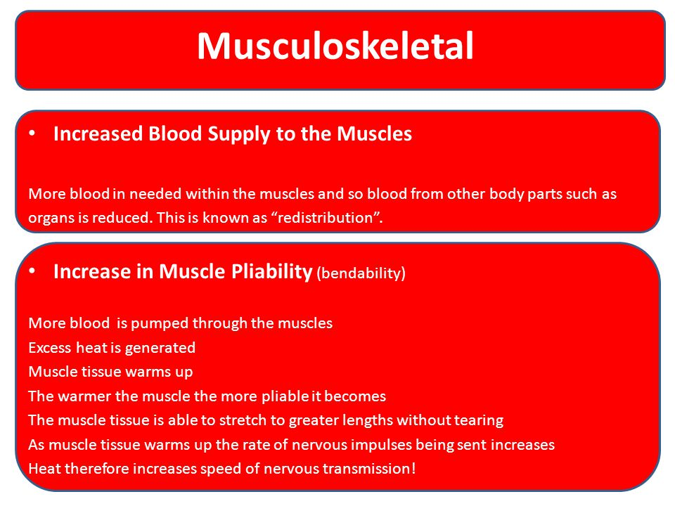 Musculoskeletal Increased Blood Supply to the Muscles