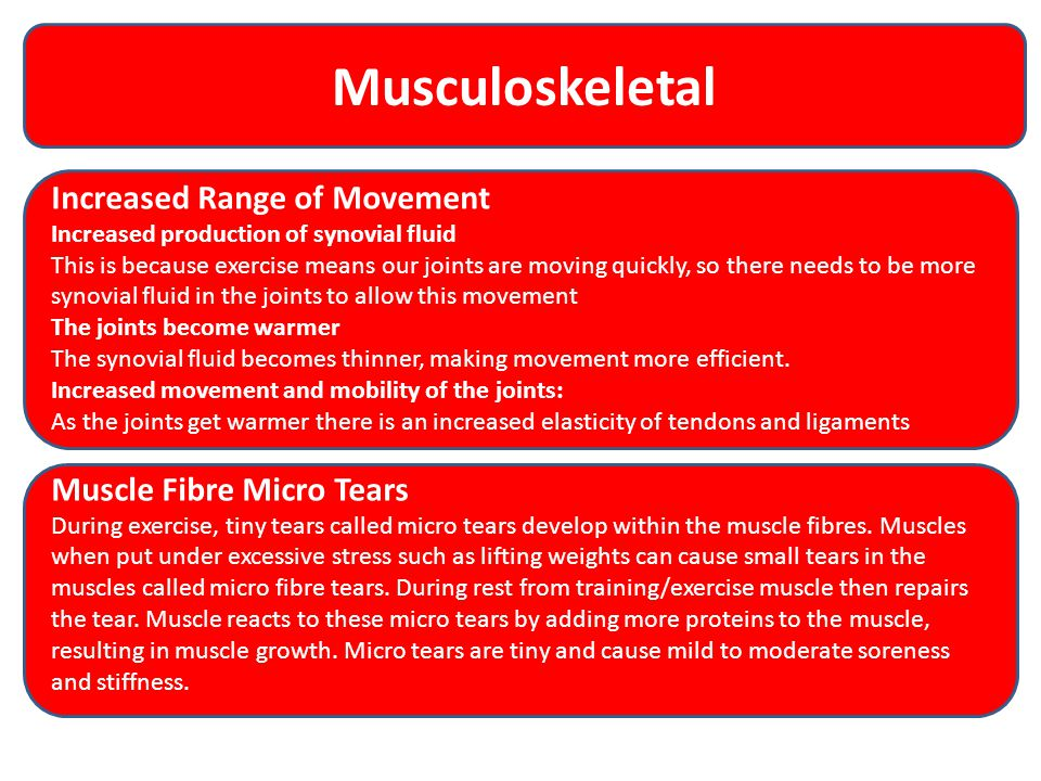 Musculoskeletal Increased Range of Movement Muscle Fibre Micro Tears