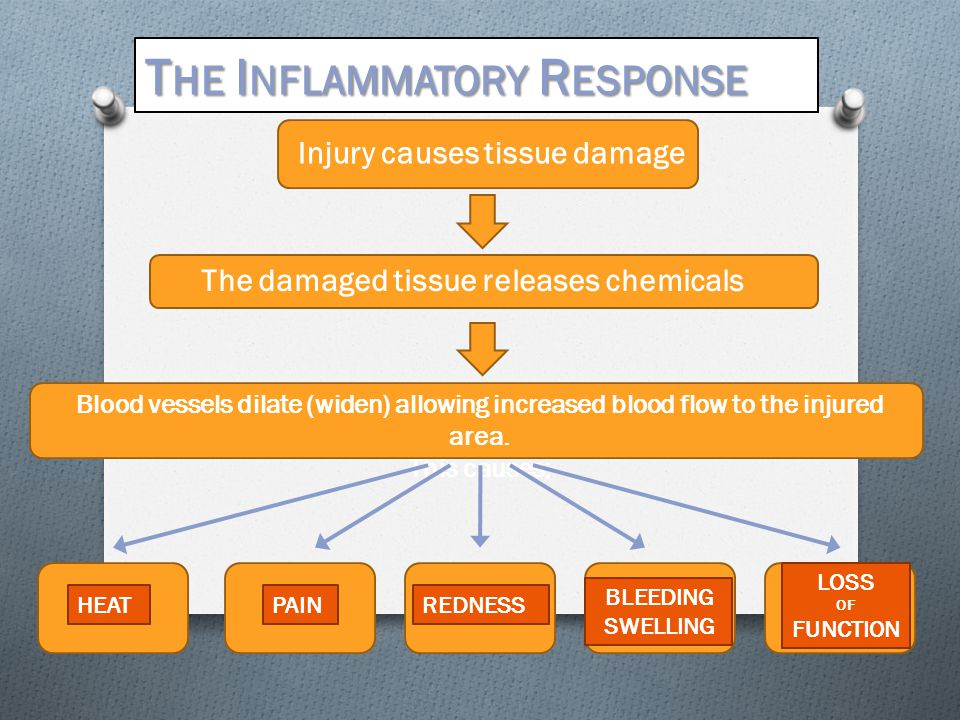 Injury causes tissue damage The damaged tissue releases chemicals