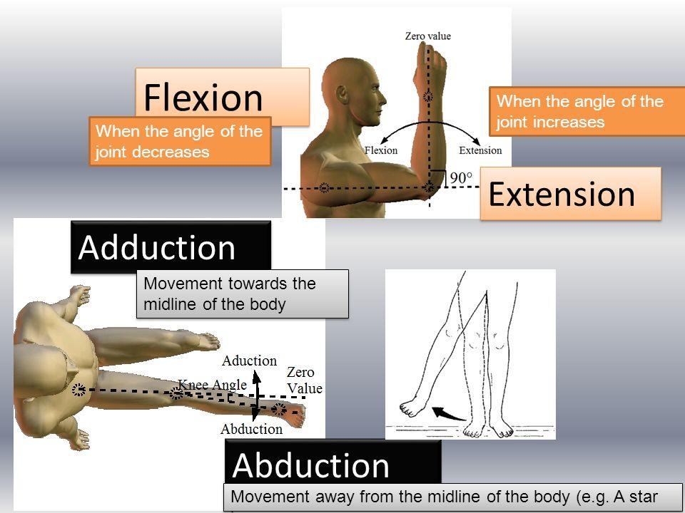 Flexion Extension Adduction Abduction