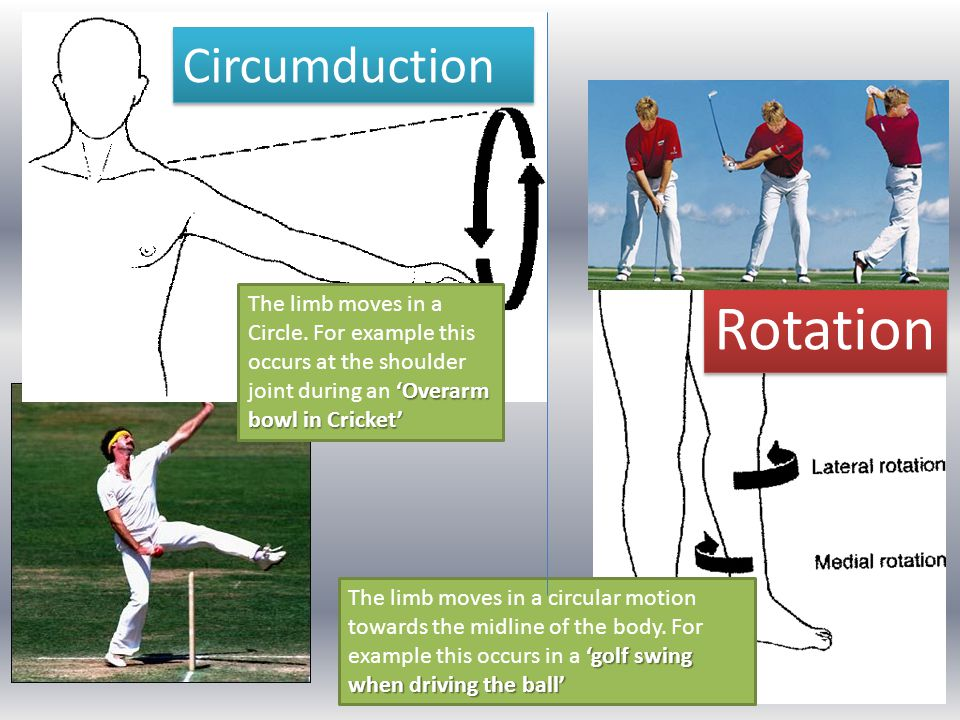 Rotation Circumduction