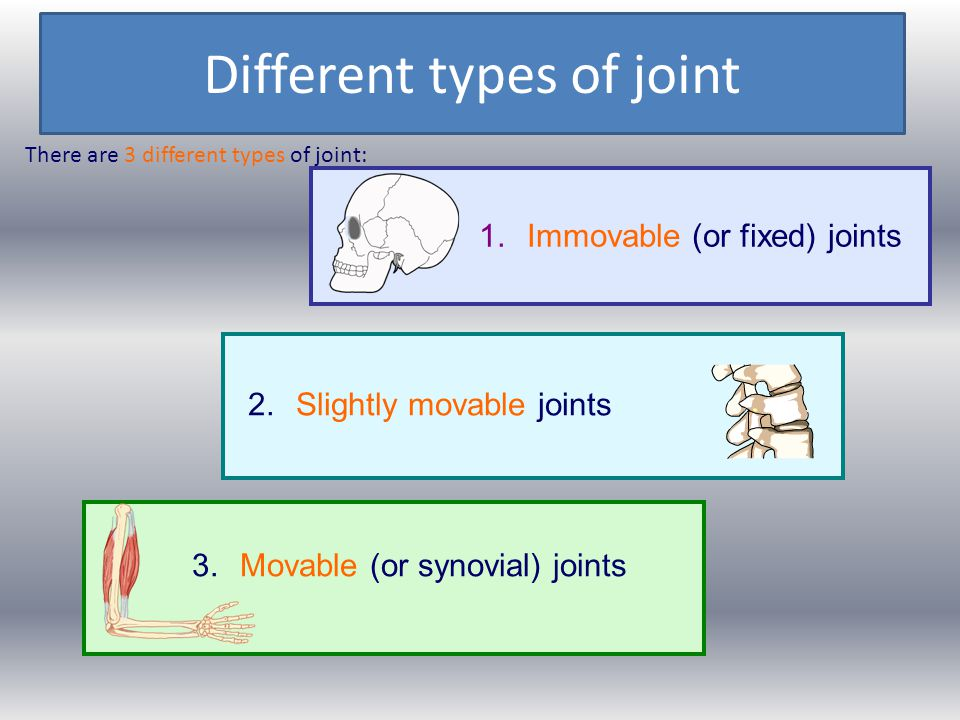 Different types of joint
