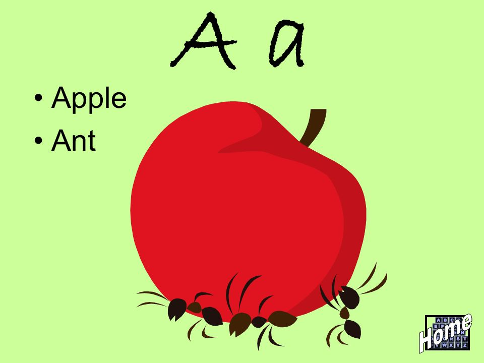 A a Apple Ant Home