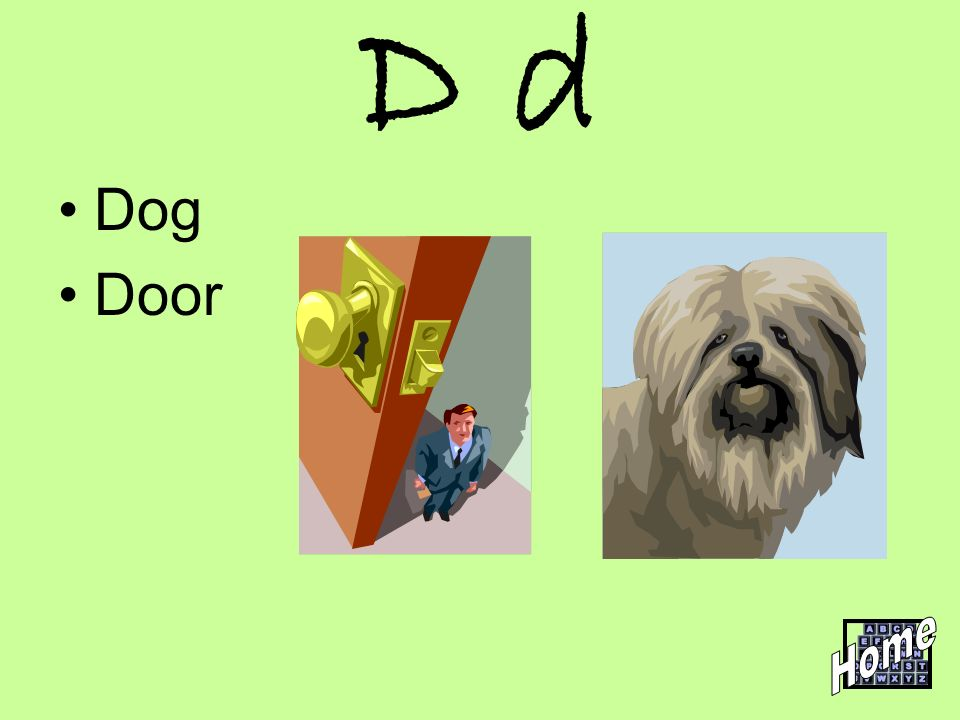 D d Dog Door Home
