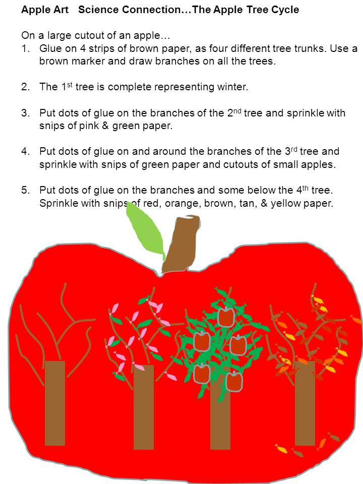 Apple Art Science Connection…The Apple Tree Cycle