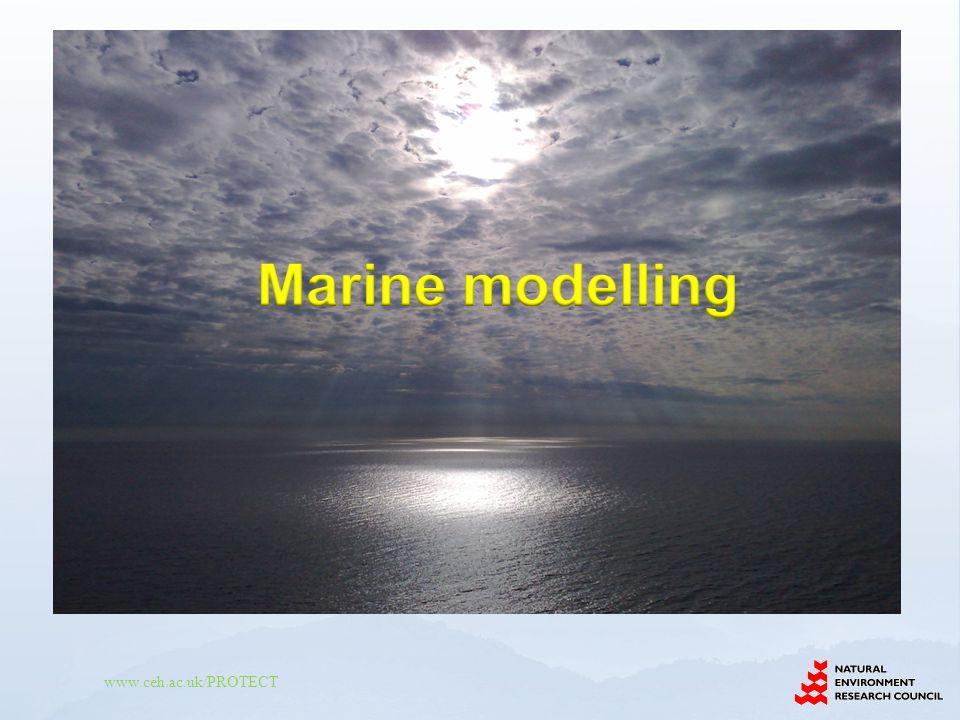 Marine modelling 22
