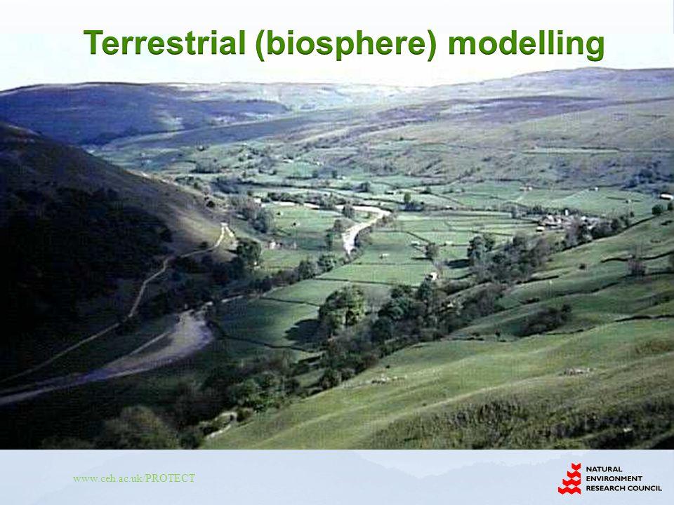 Terrestrial (biosphere) modelling