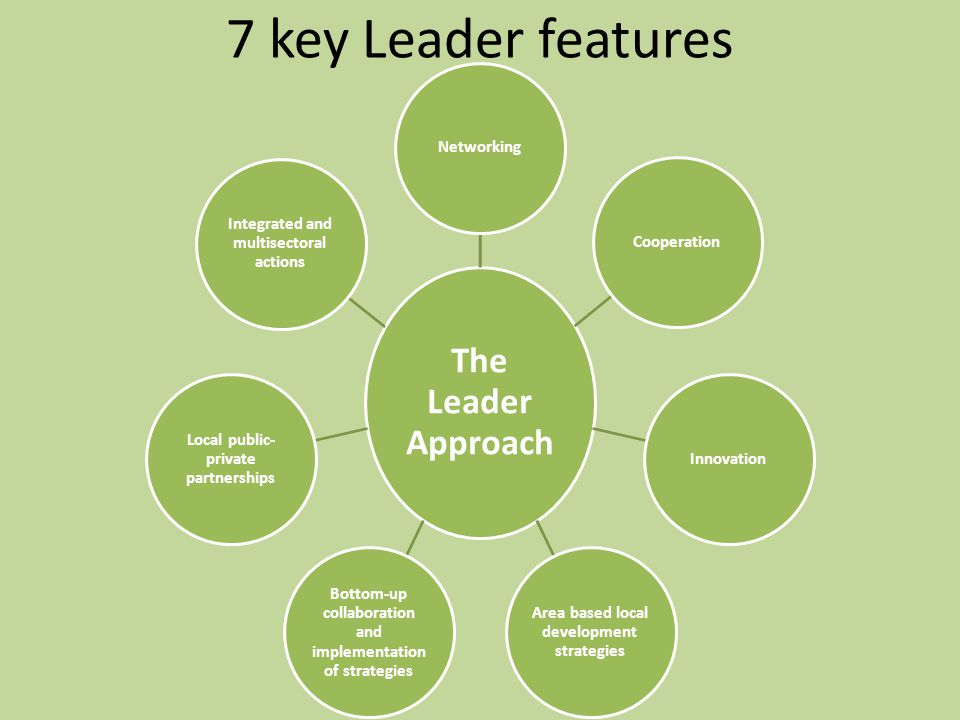 7 key Leader features The Leader Approach Networking Cooperation