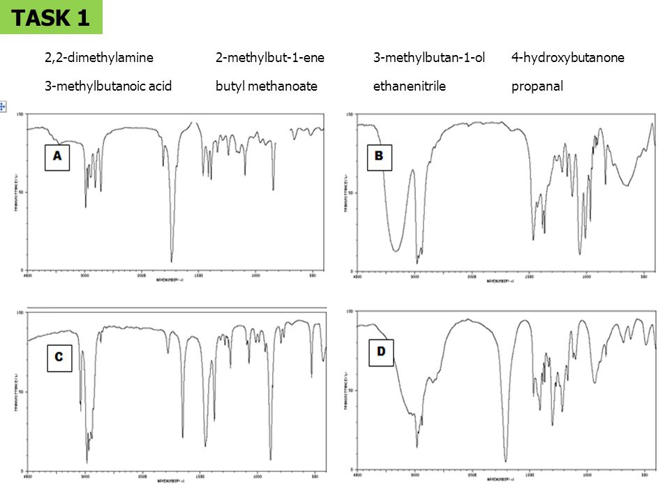TASK 1 3-methylbutanoic acid butyl methanoate ethanenitrile propanal