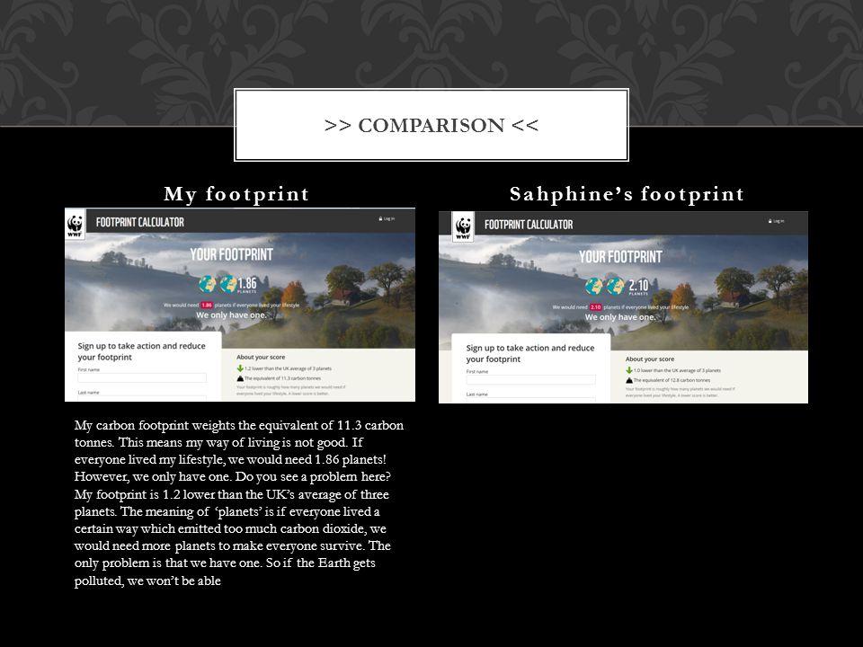 >> COMPARISON <<