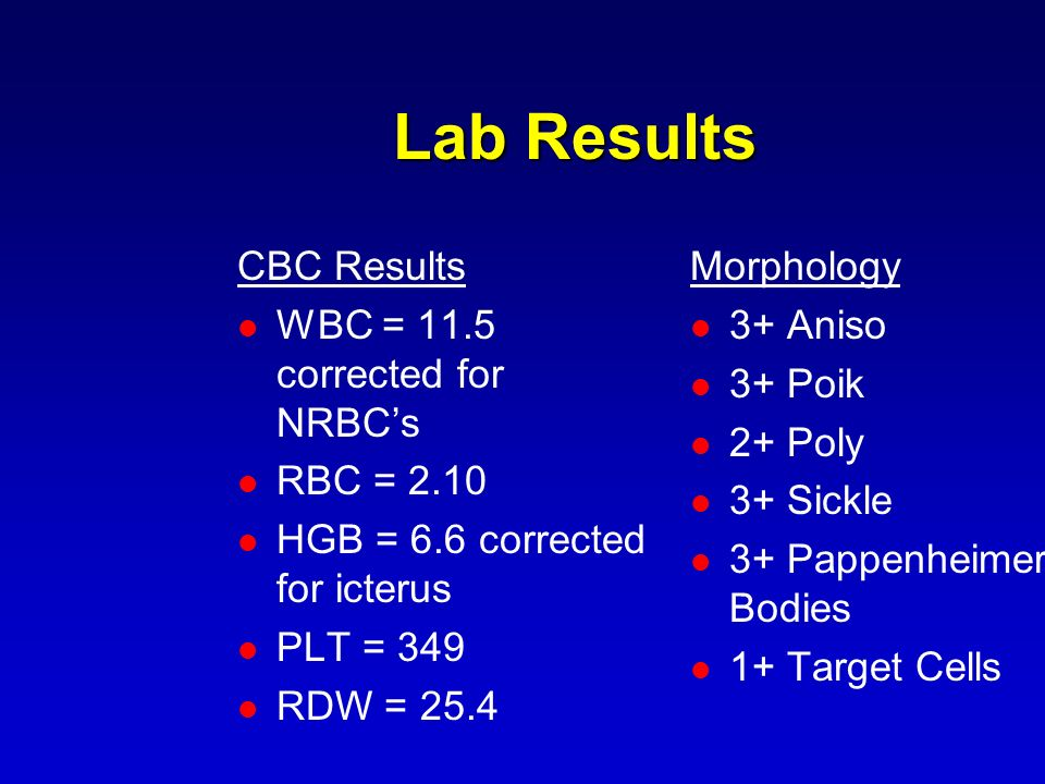 Lab Results CBC Results WBC = 11.5 corrected for NRBC's RBC = 2.10