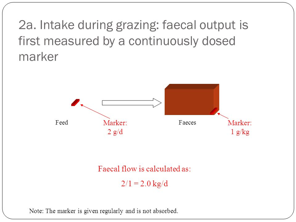Faecal flow is calculated as: