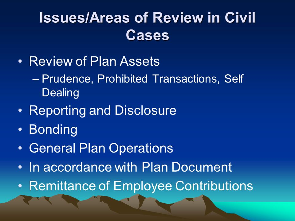 Issues/Areas of Review in Civil Cases