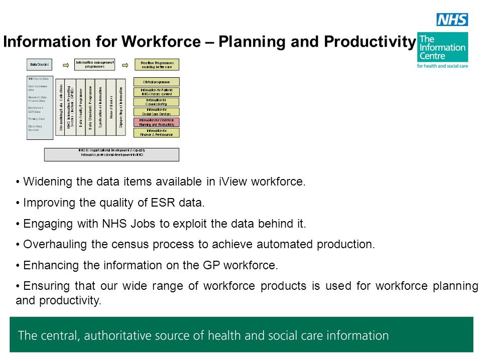 Information for Workforce – Planning and Productivity