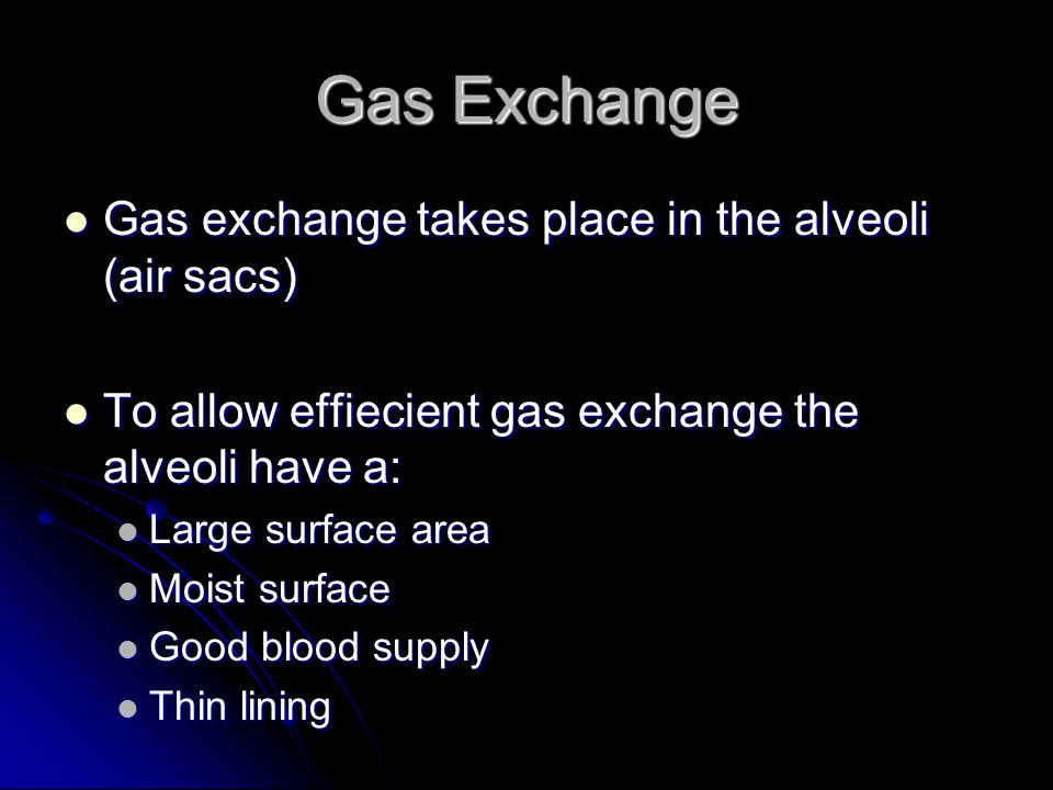 Gas Exchange Gas exchange takes place in the alveoli (air sacs)