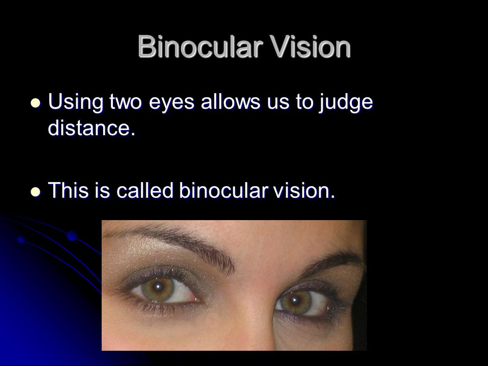 Binocular Vision Using two eyes allows us to judge distance.
